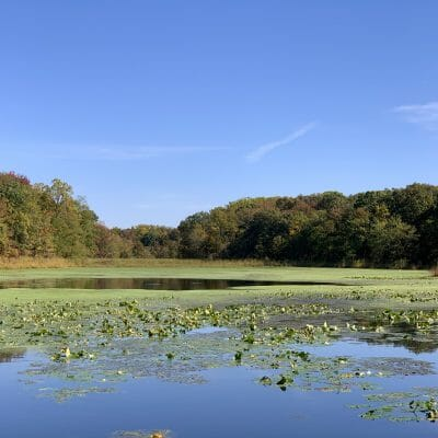 forest greens lake preserve aberdeen maryland